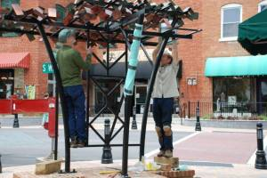 """Here I am helping Robert Tully install his """"Tree Bench"""" in downtown Wake Forest."""